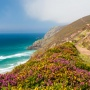 I Love Cornwall in the Springtime!